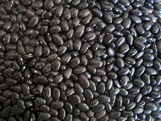 Black Beans benefits
